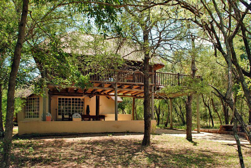 Vakantiehuis Treetops
