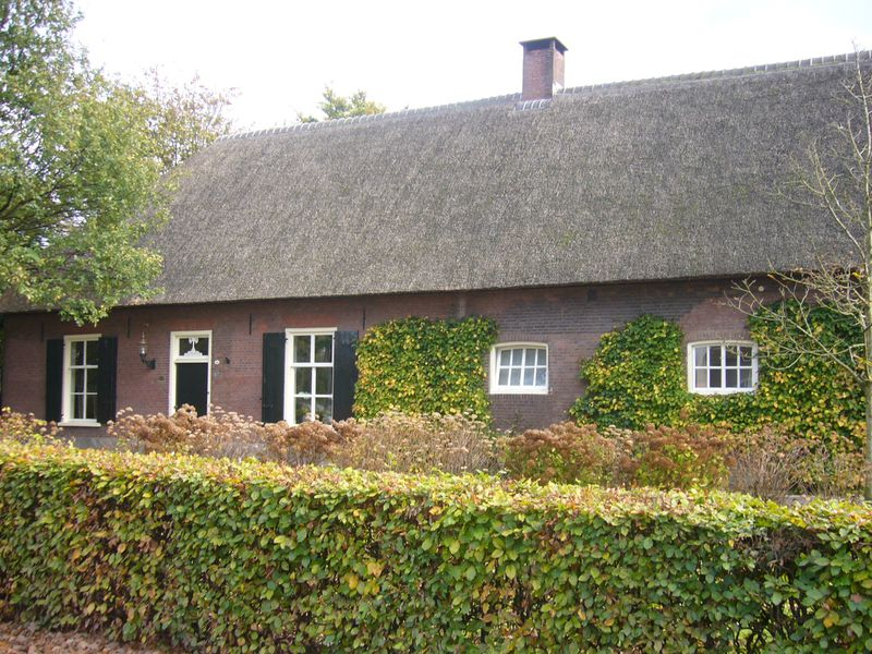 Bed and Breakfast Udenhout