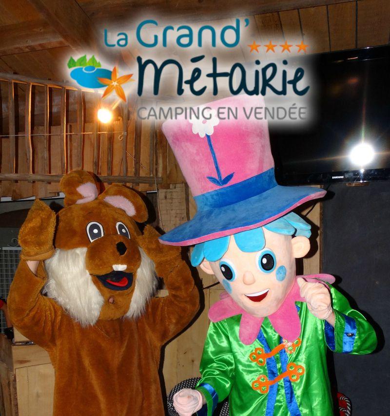 Camping La Grand' Metairie