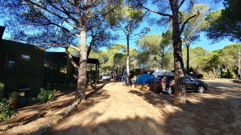 Camping La Siesta (Calella de Palafrugell)