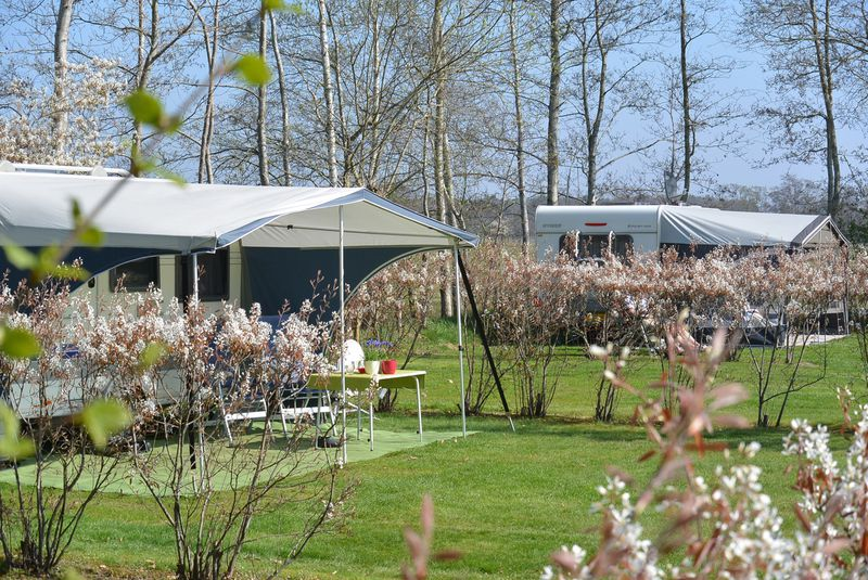 Camping Jelly's Hoeve (Adults Only)