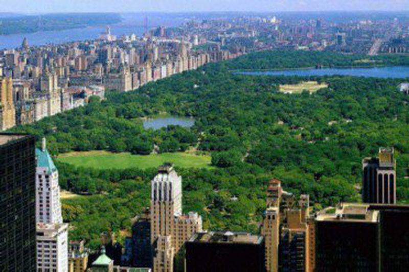 Hostel Central Park