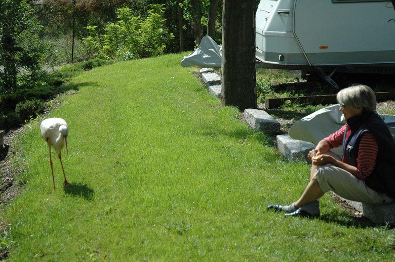 Camping Municipal des Trois Châteaux