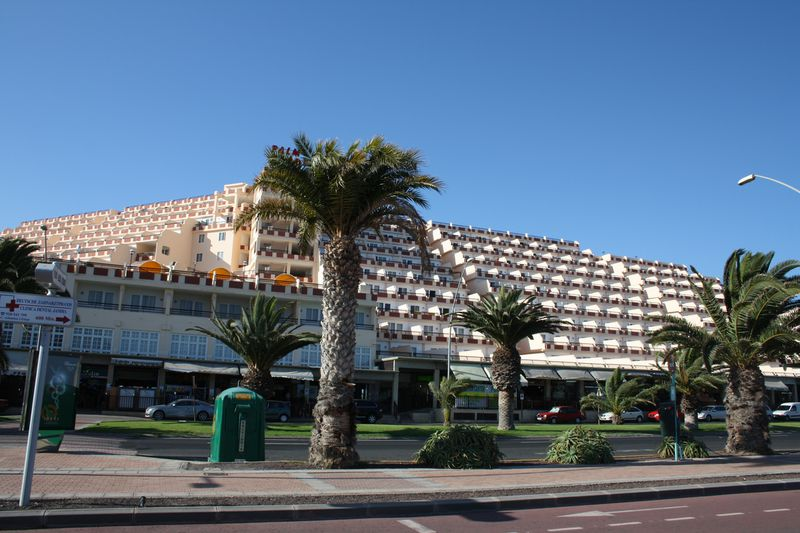 Appartement Palm Garden