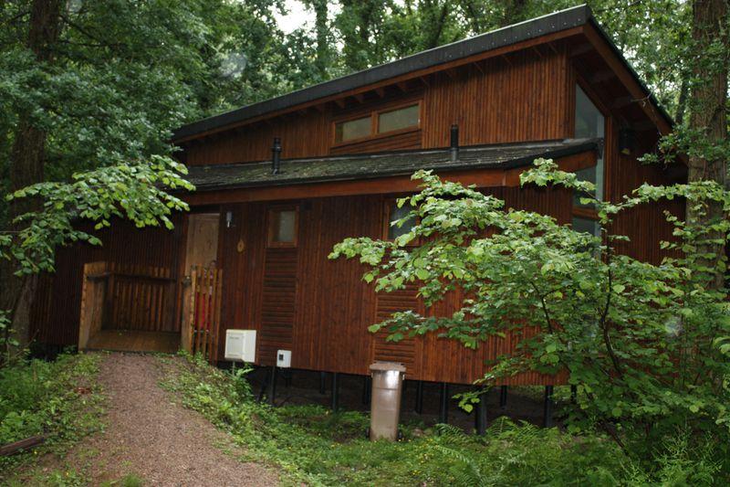Vakantiepark Forest of Dean Forest