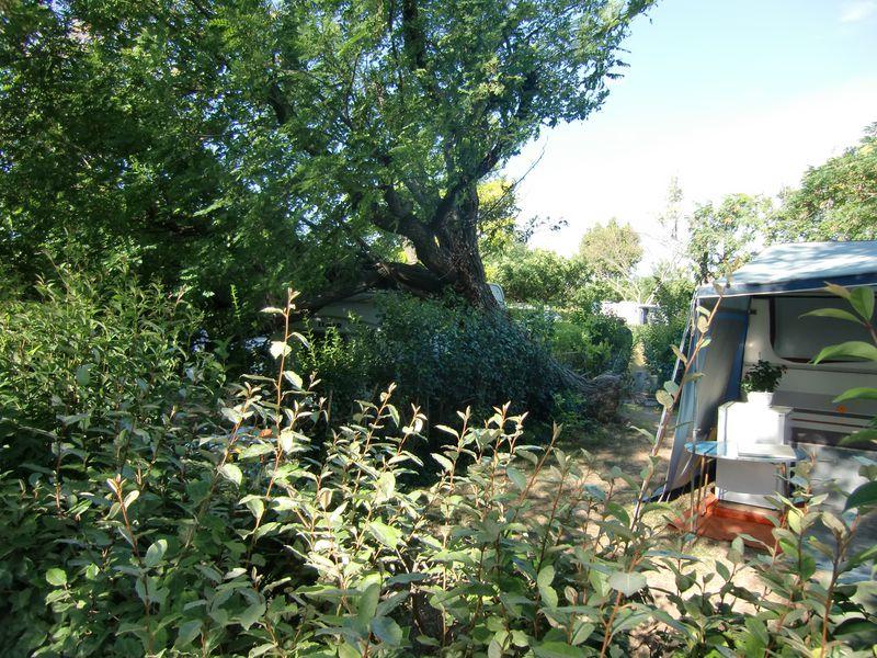 Camping Municipal Les Romarins